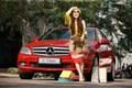 Phụ nữ thời nay và chiếc xe hơi