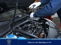 Đại Nam Auto Service – Chuyên gia sửa chữa, bảo dưỡng ô tô